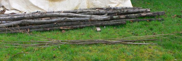 Hazel rods alongside the chestnut poles