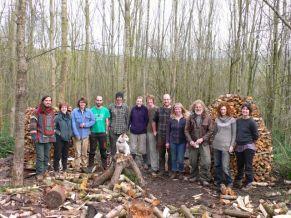 Log piles in 2014