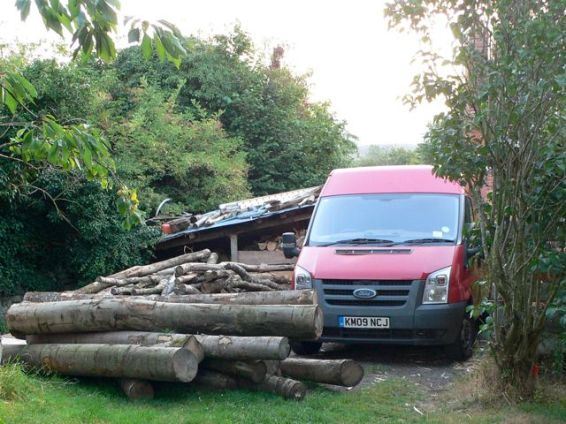 Enough logs for up to 80 chairs and a winter's firewood