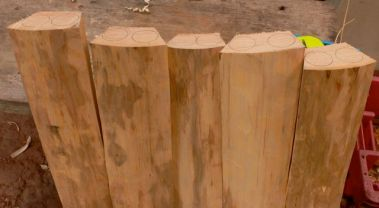 The legs have to be marked about 1cm away from the stained wood beneath the bark.